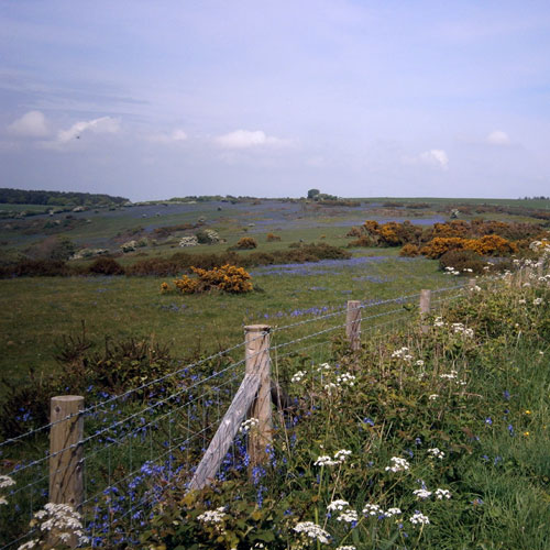 About Gorwell Farm Holiday Cottages - View over fields