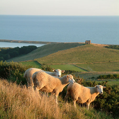 About Gorwell Farm Holiday Cottages - St Catherines Chapel