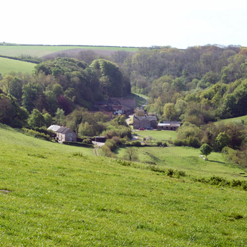 About Gorwell Farm Holiday Cottages - View to cottages