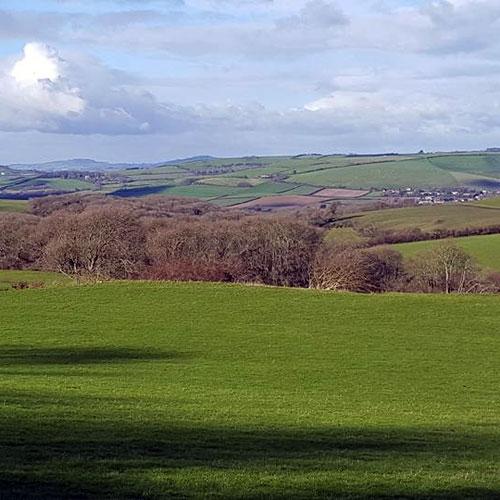 Visit our local Dorset attractions - Dorset Lanscape
